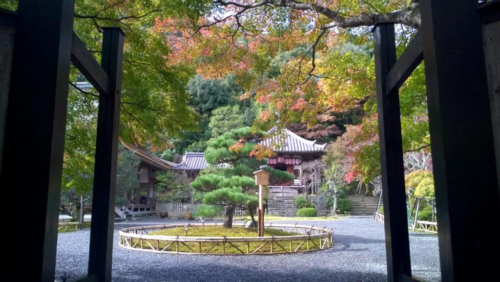 Осень в храме Нисон-ин (Киото, Япония)