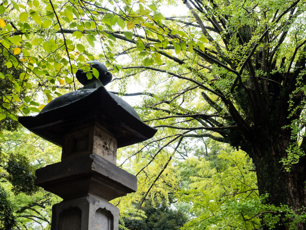 Stone lantern at Akasaka Hikawa shrine in Tokyo (Japan)