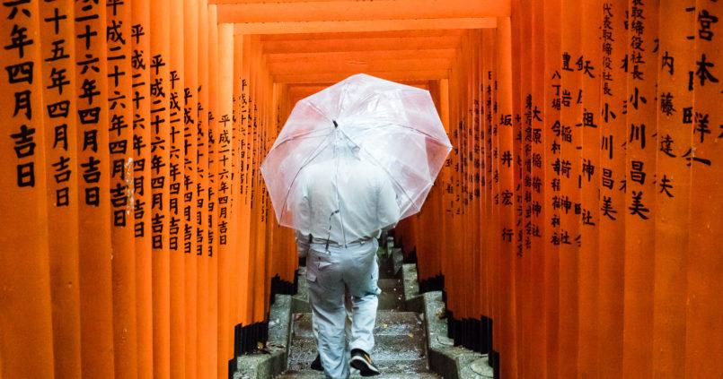Red torii gates in Hie shrine (Tokyo, Japan)
