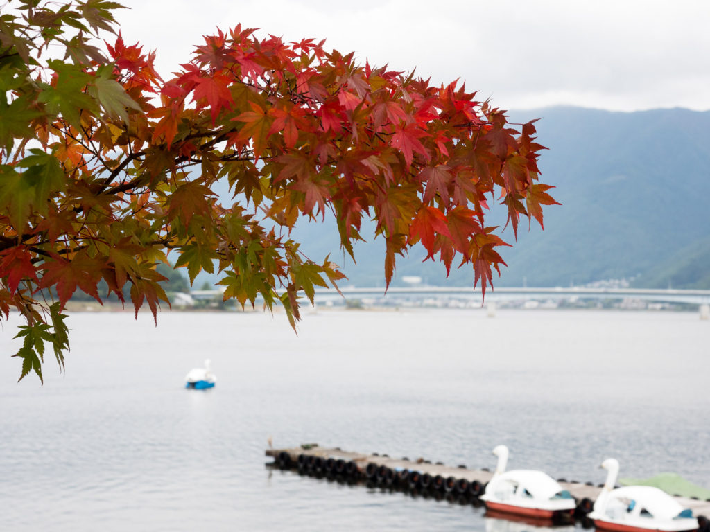 Осень на озере Кавагутико (Пять Озёр Фудзи)