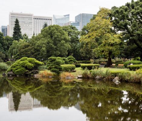 Парк Хибия в Токио