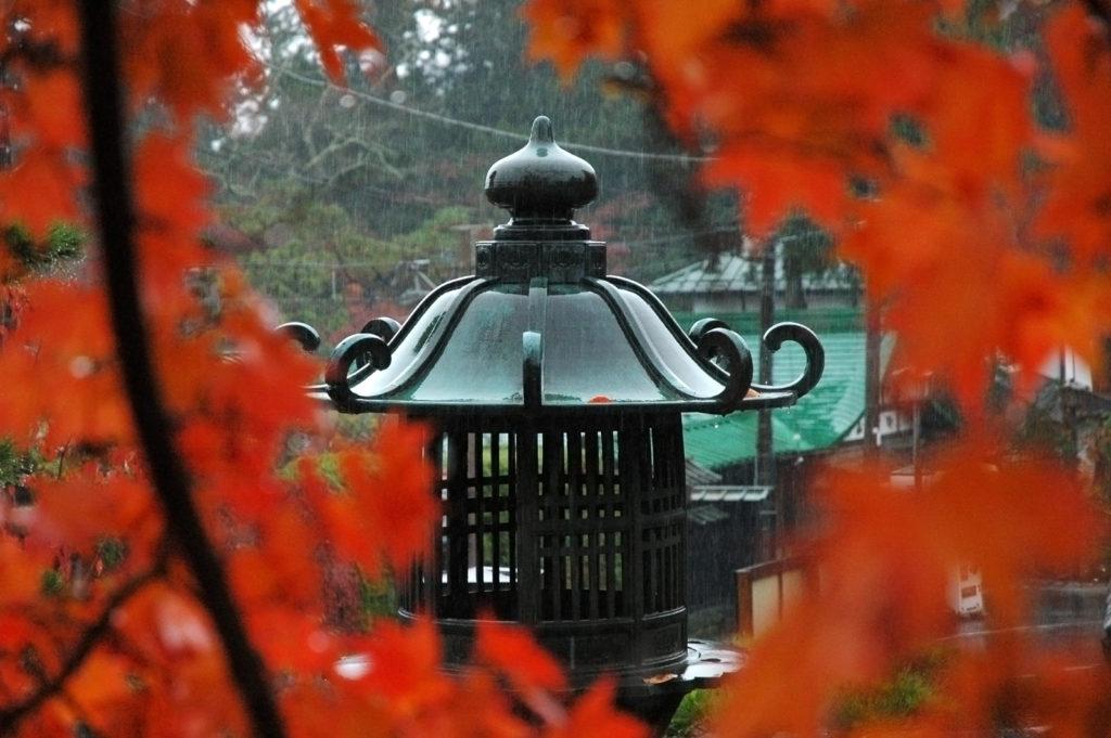 Fall colors in Toshogu, Nikko