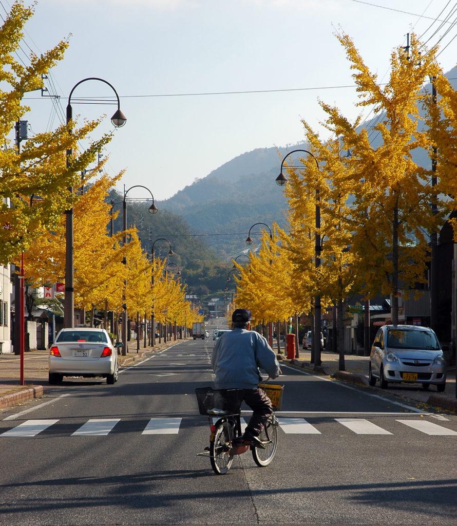 Дзэнцудзи, префектура Кагава (осенние краски Японии)