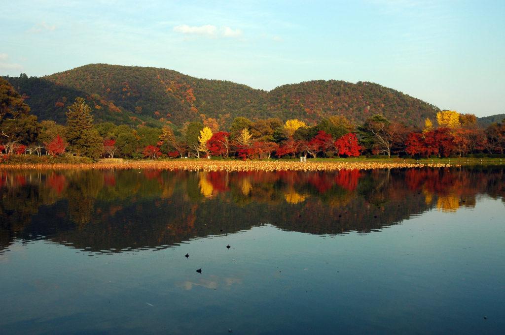 Fall foliage at Daikakuji temple, Kyoto