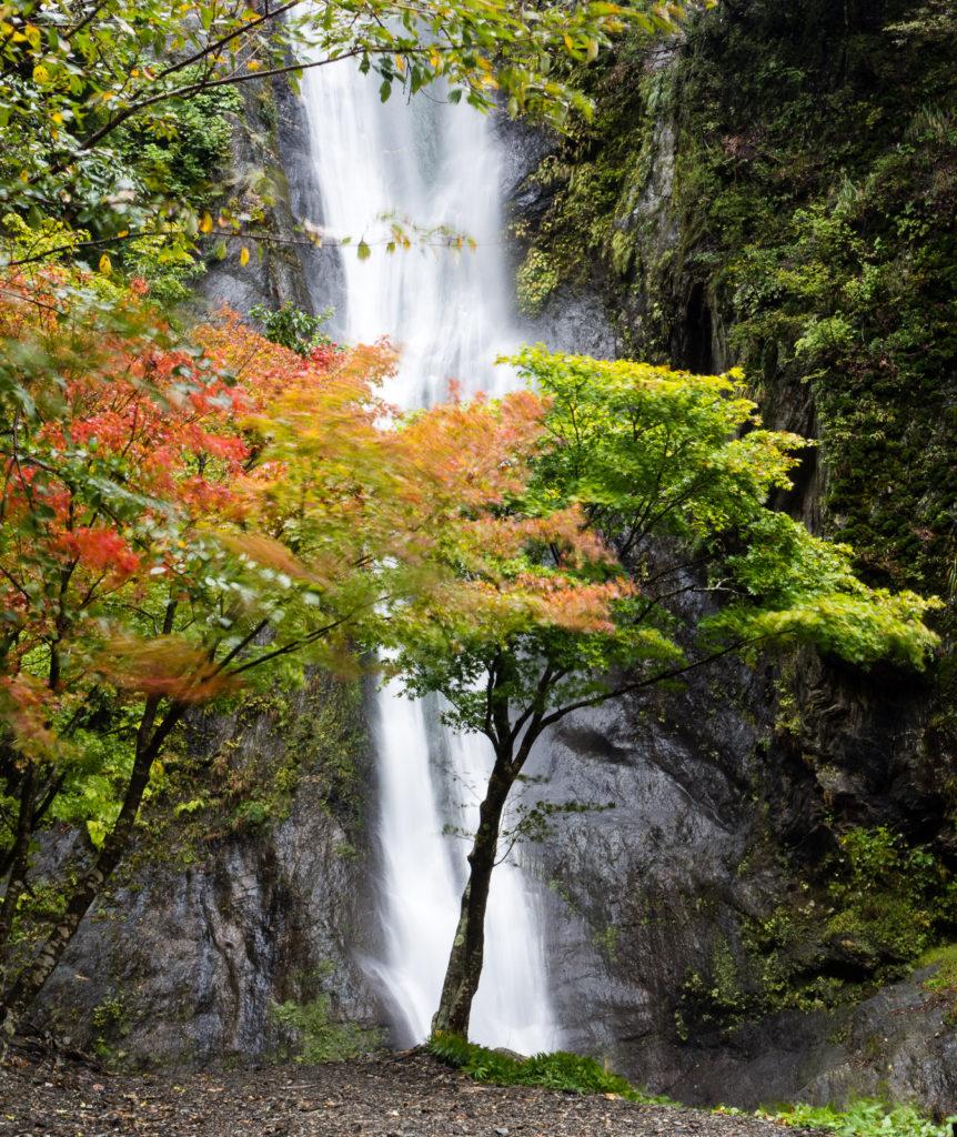 fall colors in Japan