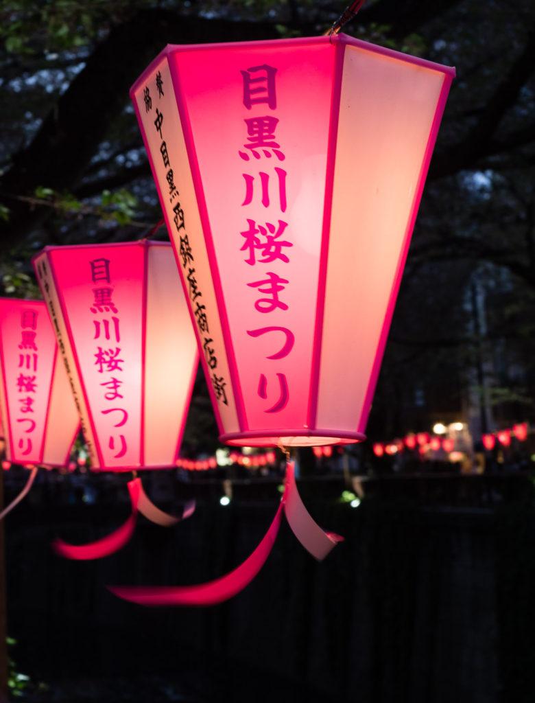 Cherry blossom festival on Meguro river in Tokyo, Japan