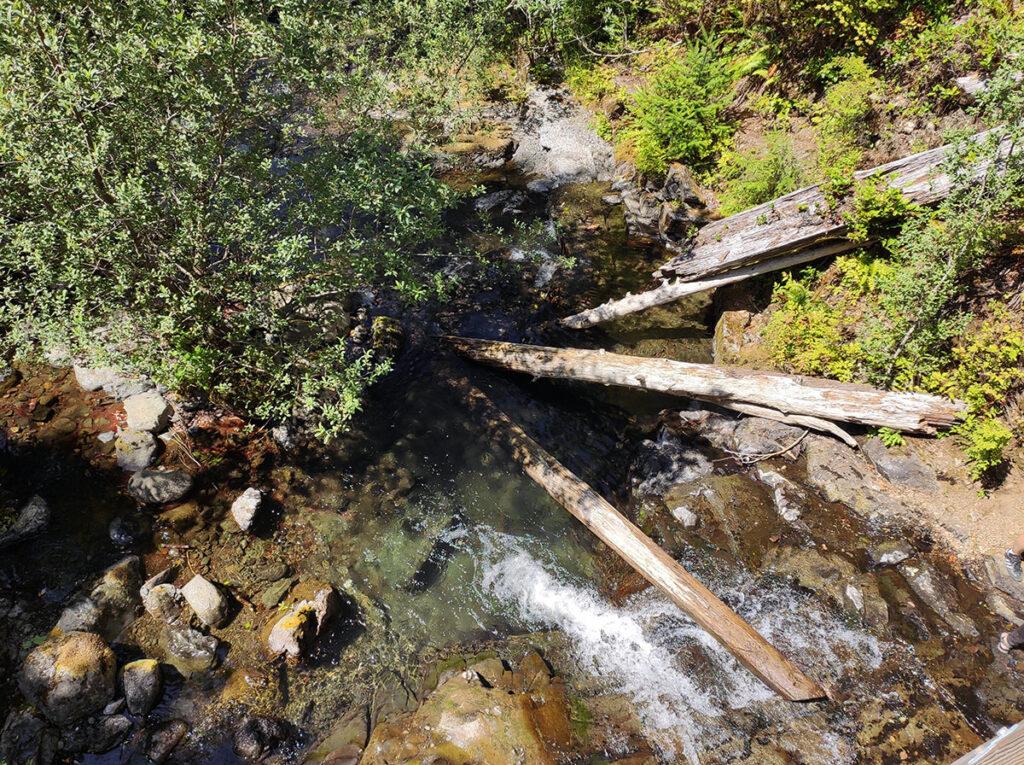 Gatton Creek Falls, Olympic peninsula, WA